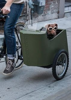 Bicycle Sidecar for Your Dog : 17 Steps (with Pictures) - Instructables Custom Motorcycles, Custom Bikes, Custom Cycles, Bicycle Sidecar, Tricycle Bike, Biking With Dog, Side Car, Velo Vintage, Vintage Bicycles