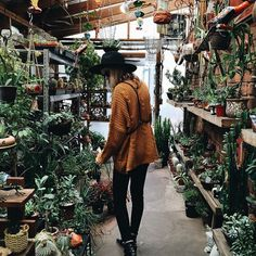 i know dis ain't a bedroom but imagine though. being surrounded by plants and cacti, kinda cool, no?