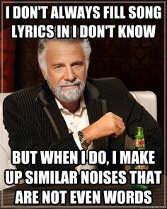 The Most Interesting Man In The World - i dont always fill song lyrics in i dont know but when i d