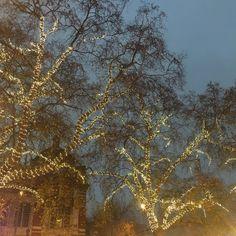 Christmas Magic in Chelsea -- A fabulous neighbourhood & home to our Christmas ShopUp! Fairy Art, The Neighbourhood, Chelsea, Magic, Christmas, Outdoor, Xmas, Outdoors, The Neighborhood