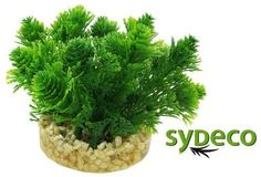 SYDECO Nature Collection Aqua Flora Aquarium Nano Bush Green