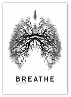 When the breath wanders the mind also is unsteady. But when the breath is calmed the mind too will be still, and the yogi achieves long life. Therefore, one should learn to control the breath. ~ Svatmarama, Hatha Yoga Pradipika