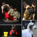 At Least New York's Pooches Got To Enjoy Halloween
