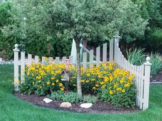 Corner fence I built a few years ago, now with Black eyed Susans in bloom.