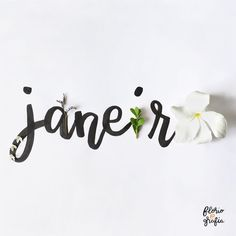 Messes do ano Black N White Wallpaper, Life Reflection Quotes, Mobile Wallpaper, Iphone Wallpaper, Calendar Date, Months In A Year, Lettering Design, Love Flowers, Instagram Feed