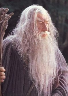 Tolkien's Lord of the Rings :: Gandalf photo gallery Gandalf, Aragorn, Lord Of Rings, Fellowship Of The Ring, The Hobbit Movies, O Hobbit, Ian Mckellen, The Two Towers, Kino Film