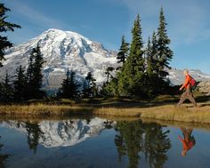Discover Mt. Rainier like never before on this day-long, guided walk or snowshoe adventure with a stop for lunch. Learn local secrets as you enjoy spectacular scenery and explore thrilling trails.