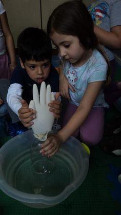 Educação Infantil e Cidadania: Experiência de Ciências: A Luva Viva!