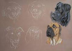 """Résultat de recherche d'images pour """"pastelliste animalier chien"""""""