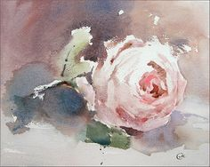 Rose Watercolor Original Painting 8x10 inches by CMwatercolors