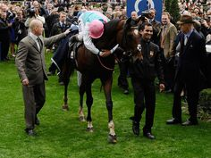 Sir Henry Cecil bade farewell to Frankel today as the world's best racehorse left his Warren Place stable in Newmarket to begin his new career as a stallion.