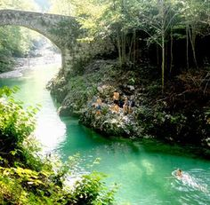 De beste zwemplekken in Slovenië Bergen, Bora Bora, Travel Around The World, Around The Worlds, Europa Tour, Bohinj, Slovenia Travel, Camping Places, Lake Camping
