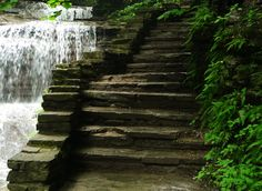 The Buttermilk Falls gorge trail, Ithaca, NY. USA. Photo by Gabriela LeBaron