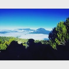 #followme #new #followforfollow #new# picofday #photoofday #team974 #974island #weare974 #volcanicisland #landscap #natur #bestifday #reunionisland #pitondesneiges  #tagsforlikes #974paradise by trail_nature