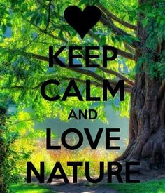 KEEP CALM AND LOVE NATURE. Another original poster design created with the Keep Calm-o-matic. Buy this design or create your own original Keep Calm design now. Frases Keep Calm, Keep Calm Quotes, Mother Earth, Mother Nature, Keep Calm Wallpaper, Nature Wallpaper, Keep Clam, Keep Calm Signs, Keep Calm Posters