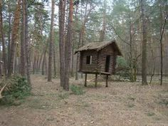 23 Haunting Photos Of Russia's Abandoned Summer Camps