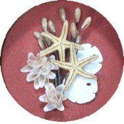 Shell Art Kits - Seashells And Wood