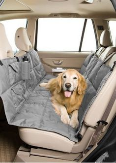 love this idea for long car trips with the ladies! this way they could ride in the back seat and keep them up on the seat, protect it from possible potty accidents, and has some storage for toys/treats/water...throw some little blankies in to make it cozy :)