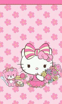 2146 Best pink Hello Kitty images  Hello kitty, Kitty, Hello