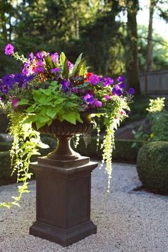 Magnificent French garden container…how lovely! Magnificent French garden container…how lovely! Garden Urns, Garden Planters, Lawn And Garden, Spring Garden, Potted Garden, Fall Planters, Flower Planters, Container Flowers, Container Plants