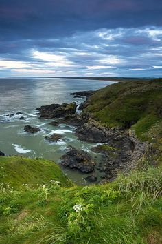 Forvie nature Reserve in Aberdeenshire