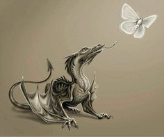 ; dragon and butterfly