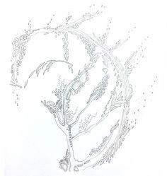 """Algae"" by DoolallytapDesign"