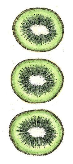Kiwi drawing, ink and watercolour #food #recipe