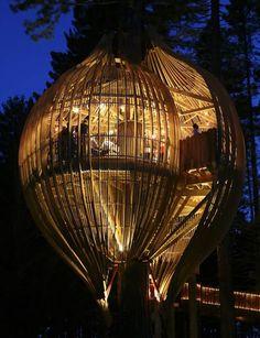 balon ağaç ev:)