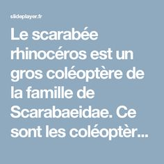 Le scarabée rhinocéros est un gros coléoptère de la famille de Scarabaeidae. Ce sont les coléoptère les plus gros. Il est de couleur brun rougeâtre ou. - ppt télécharger