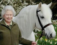 Queen of England with her horse, I've seen this horse at the royal stables!!! It was a once in a lifetime experience.