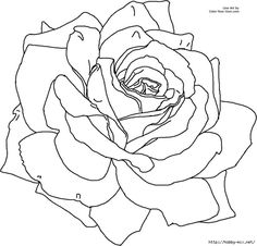 rose coloring page free large images