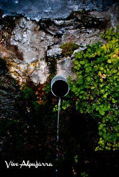 Fuente verde. Vive Alpujarra