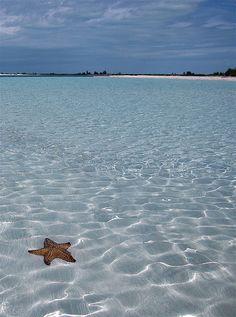 Cayo Largo, Cuba https://www.hotelscombined.com/?a_aid=150886