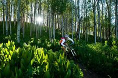 Annual Pearl Pass Mountain Bike Tour from Crested Butte to Aspen in September...beautiful!