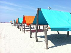 Beach Shack Cape May NJ