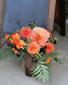 Farmwife Flowers | August | 'Nicholas' & 'Coppertone' Dahlias & 'Black Knight' Scabiosa | http://pinterest.com/FarmwifeFlowers/