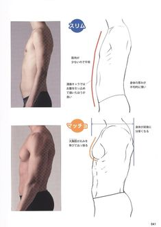 Reference Guide for Drawing Male Muscles | VK