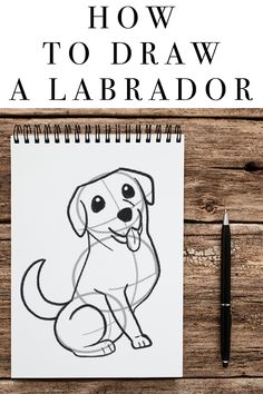 How To Draw A Labrador Fun Facts About Dogs, Dog Facts, Dog Activities, Happy Puppy, Labrador Retriever Dog, Dog Paintings, Labradors, Pen And Paper, Dog Quotes