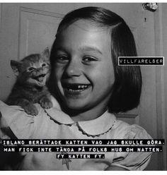 Fy katten fy - [villfarelser] Captions, Haha, Hilarious, Sayings, Words, Memes, Quotes, Funny Stuff, Gifs