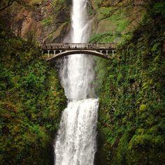 Oregon's Multnomah Falls is a must-visit road trip destination. Photo courtesy of ravenreviews on Instagram.