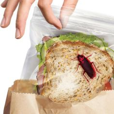 berrymaggie's save of Lunch Bugs Sandwich Bags - $15 on Wanelo