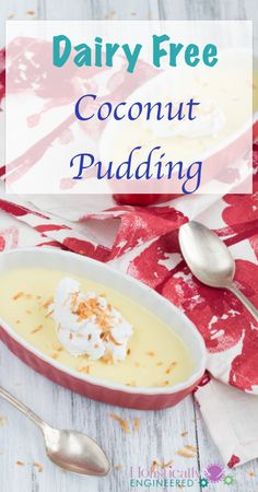 Dairy Free Coconut Pudding | holisticallyengineered.com #paleo #dairyfree #lowcarb