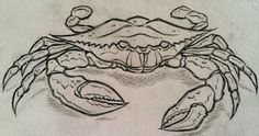 crab tattoos | Crab Sketch, 2011