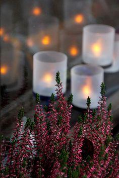 Velas. Una llama que nunca se apaga en honor y recuerdo de nuestros seres queridos.