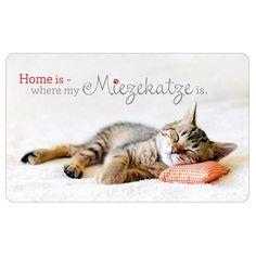 Die 11 Besten Bilder Von Katze Geschenke Für Katzenfans Cats