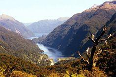 """La région de Queenstown de l'île du Sud est célèbre pour ses fjords qui s'enfoncent dans les montagnes couvertes de forêts et de cascades, ce qui fait de la région une zone de loisirs et d'aventures. Le plus célèbre des fjords du pays, Milford Sound, du parc national de Fiordland, a été décrit comme """"la huitième Merveille du monde"""" et inscrit au patrimoine mondial de l'Unesco."""