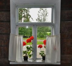Pelargoniat Lepikon torpan ikkunalla.   Kuvakuja.fi