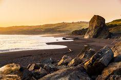 Golden Beach by Nadeen Flynn