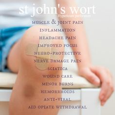 Learn about this wonder essential oil: St. John's Wort and all it's benefits. From depression to opiate withdrawal to better focus. See link to clinical studies.